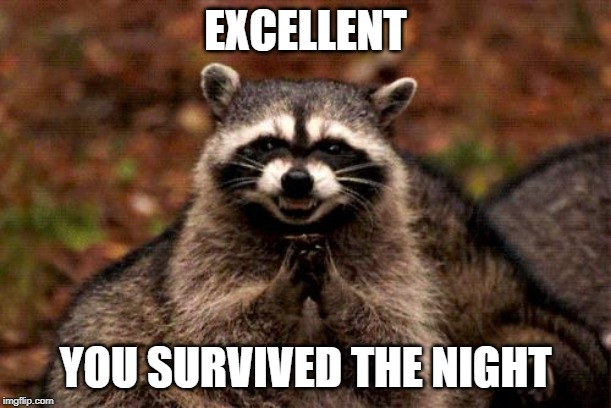 Evil Plotting Raccoon |  EXCELLENT; YOU SURVIVED THE NIGHT | image tagged in memes,evil plotting raccoon | made w/ Imgflip meme maker