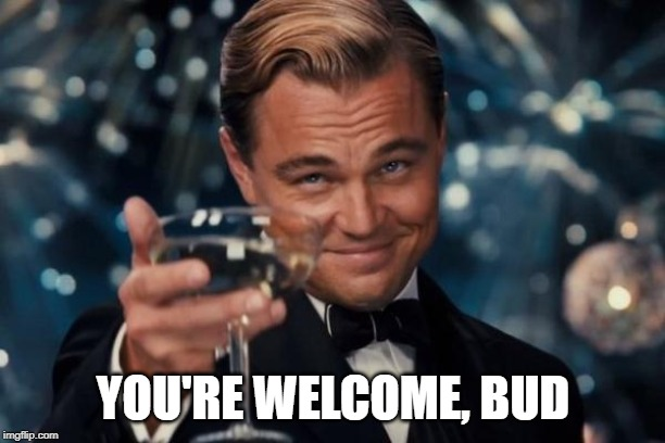 Leonardo Dicaprio Cheers Meme | YOU'RE WELCOME, BUD | image tagged in memes,leonardo dicaprio cheers | made w/ Imgflip meme maker