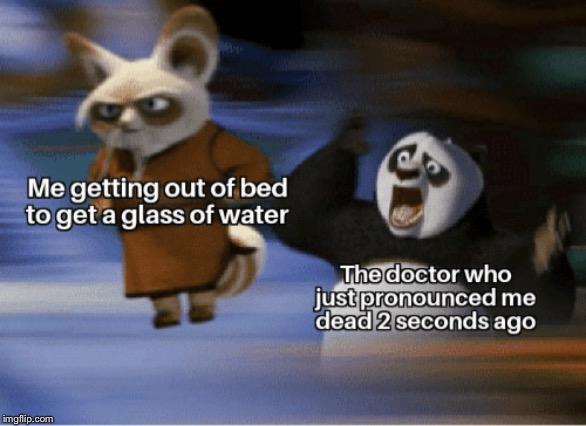 Kung Fu Panda Memes Gifs Imgflip