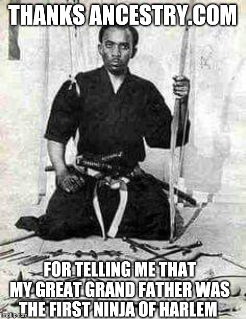 THANKS ANCESTRY.COM; FOR TELLING ME THAT MY GREAT GRAND FATHER WAS THE FIRST NINJA OF HARLEM | image tagged in ninja,memes,fortnite,instagram,funny,snapchat | made w/ Imgflip meme maker