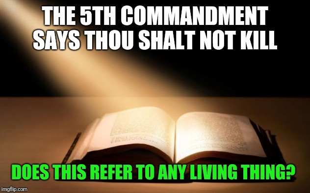 Bible | THE 5TH COMMANDMENT SAYS THOU SHALT NOT KILL DOES THIS REFER TO ANY LIVING THING? | image tagged in bible | made w/ Imgflip meme maker