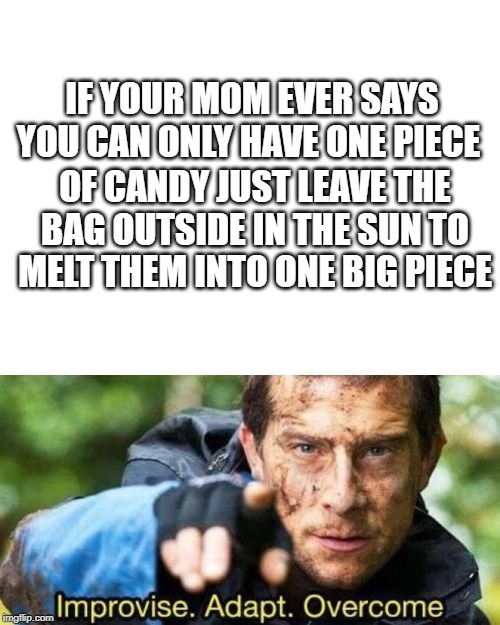 IF YOUR MOM EVER SAYS YOU CAN ONLY HAVE ONE PIECE; OF CANDY JUST LEAVE THE BAG OUTSIDE IN THE SUN TO MELT THEM INTO ONE BIG PIECE | image tagged in blank white template,improvise adapt overcome | made w/ Imgflip meme maker