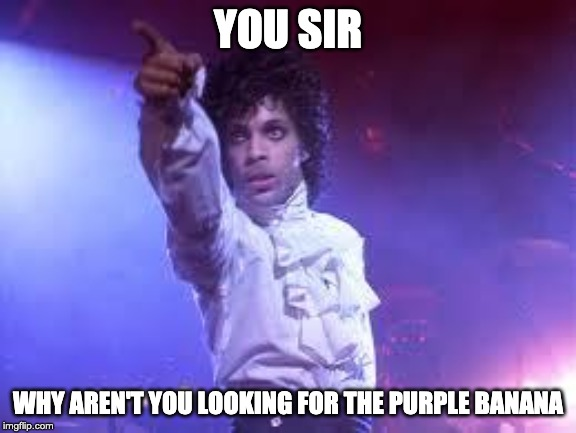 Prince |  YOU SIR; WHY AREN'T YOU LOOKING FOR THE PURPLE BANANA | image tagged in prince | made w/ Imgflip meme maker