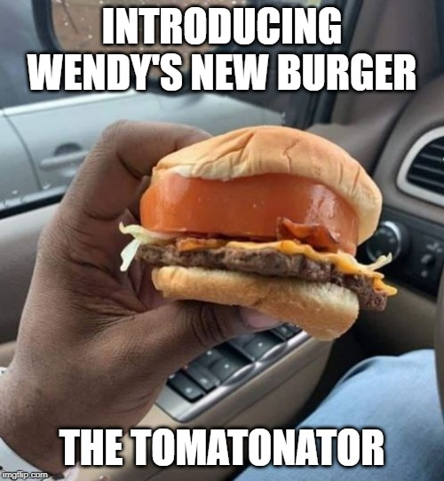 Lil Heavy There |  INTRODUCING WENDY'S NEW BURGER; THE TOMATONATOR | image tagged in funny food | made w/ Imgflip meme maker
