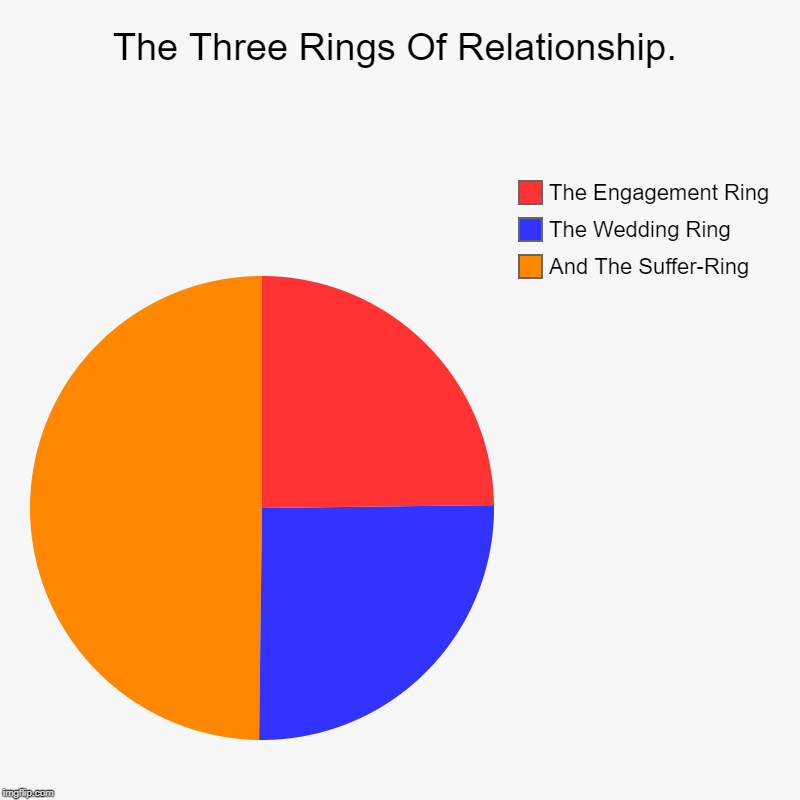 The Three Rings Of A Relationship | The Three Rings Of Relationship. | And The Suffer-Ring , The Wedding Ring, The Engagement Ring | image tagged in charts,pie charts,relationships,girls,suffering,funny | made w/ Imgflip chart maker