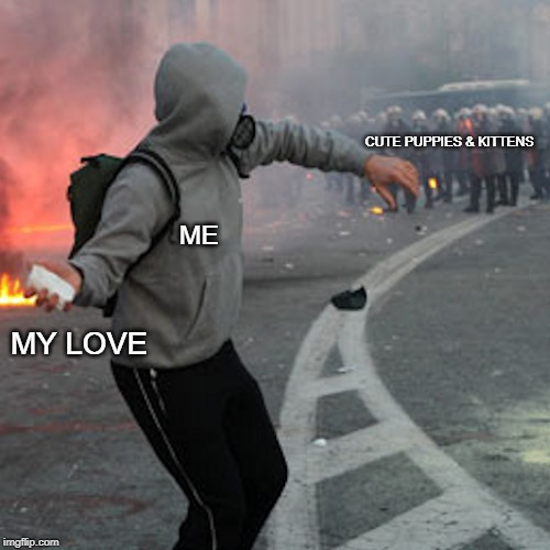 man throwing brick at riot police |  CUTE PUPPIES & KITTENS; ME; MY LOVE | image tagged in man throwing brick at riot police,cute puppies,cute kittens,love | made w/ Imgflip meme maker