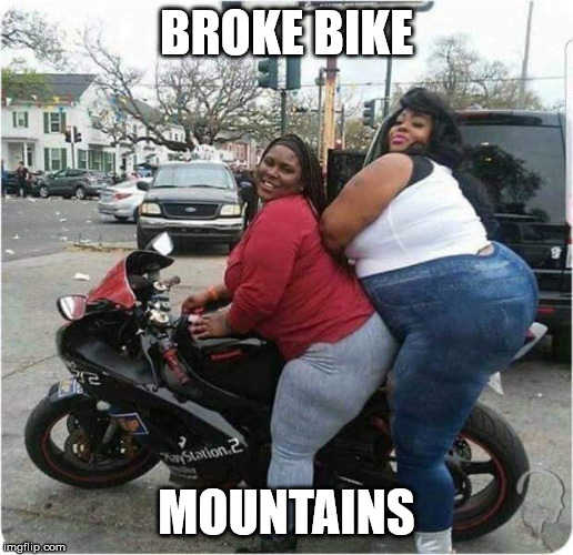 Heavy Load |  BROKE BIKE; MOUNTAINS | image tagged in funny memes,fat cat,overweight | made w/ Imgflip meme maker
