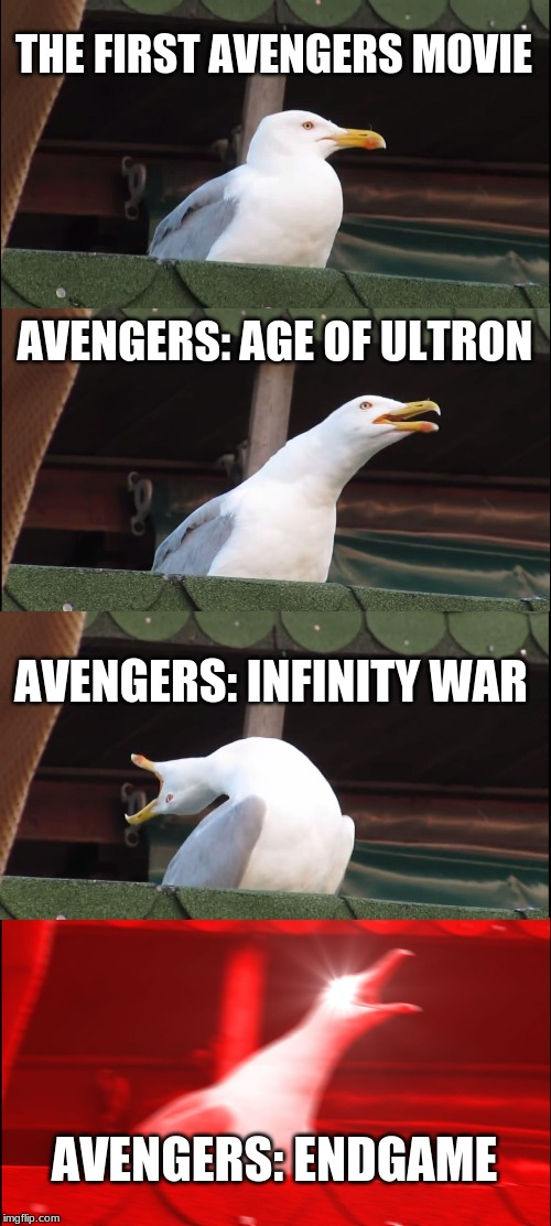 Inhaling Seagull |  THE FIRST AVENGERS MOVIE; AVENGERS: AGE OF ULTRON; AVENGERS: INFINITY WAR; AVENGERS: ENDGAME | image tagged in memes,inhaling seagull | made w/ Imgflip meme maker
