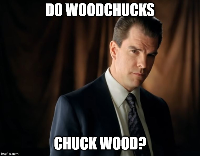 Do woodchucks chuck wood? |  DO WOODCHUCKS; CHUCK WOOD? | image tagged in geico,woodchuck | made w/ Imgflip meme maker