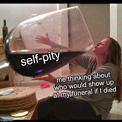 Wine Drinker | me thinking about who would show up at my funeral if I died self-pity | image tagged in wine drinker | made w/ Imgflip meme maker