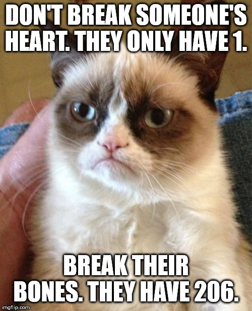 Grumpy Cat Meme |  DON'T BREAK SOMEONE'S HEART. THEY ONLY HAVE 1. BREAK THEIR BONES. THEY HAVE 206. | image tagged in memes,grumpy cat,insults,injuries,bones | made w/ Imgflip meme maker