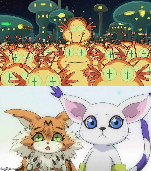meanwhile on Pluto | image tagged in digimon,digimon adventure tri,rick and morty,gatomon,meicoomon,pluto | made w/ Imgflip meme maker