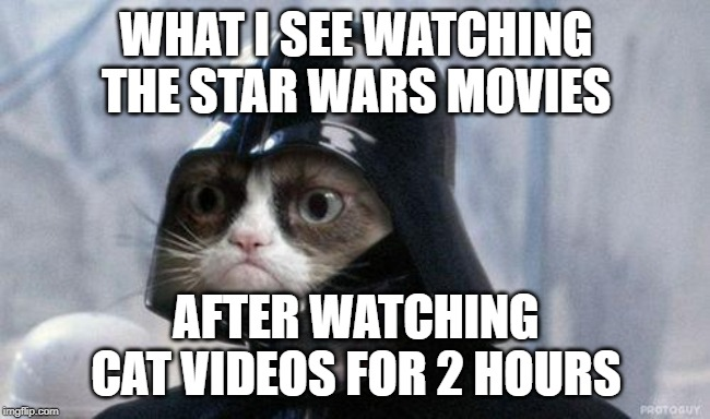 Darth cat |  WHAT I SEE WATCHING THE STAR WARS MOVIES; AFTER WATCHING CAT VIDEOS FOR 2 HOURS | image tagged in star wars | made w/ Imgflip meme maker