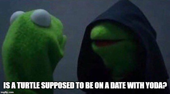 kermit me to me |  IS A TURTLE SUPPOSED TO BE ON A DATE WITH YODA? | image tagged in kermit me to me | made w/ Imgflip meme maker