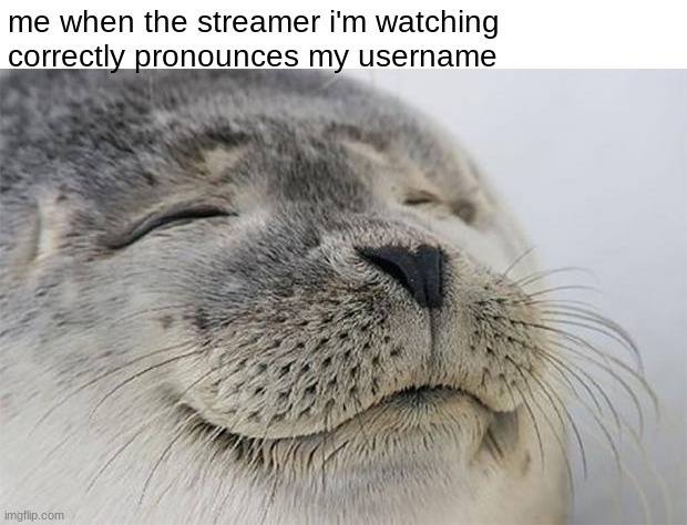 Satisfied Seal |  me when the streamer i'm watching correctly pronounces my username | image tagged in memes,satisfied seal | made w/ Imgflip meme maker