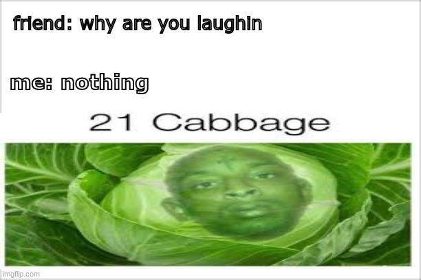 follow me please |  friend: why are you laughin; me: nothing | image tagged in memes,meme,fun,bruh,21 savage | made w/ Imgflip meme maker