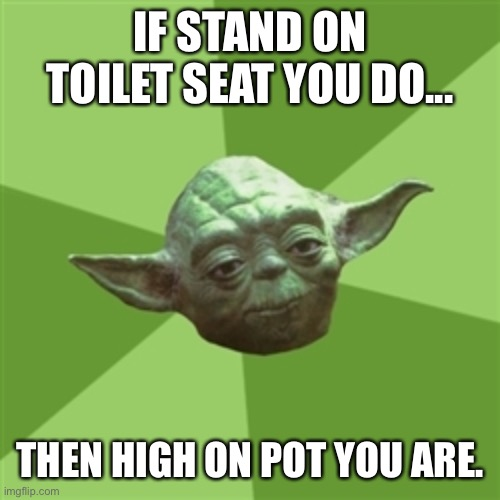 Advice Yoda | IF STAND ON TOILET SEAT YOU DO... THEN HIGH ON POT YOU ARE. | image tagged in memes,advice yoda | made w/ Imgflip meme maker