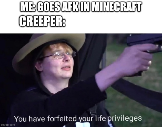 Awww Man! |  ME: GOES AFK IN MINECRAFT; CREEPER: | image tagged in minecraft,creeper,thug life,cowboy hat,fedora,oof size large | made w/ Imgflip meme maker