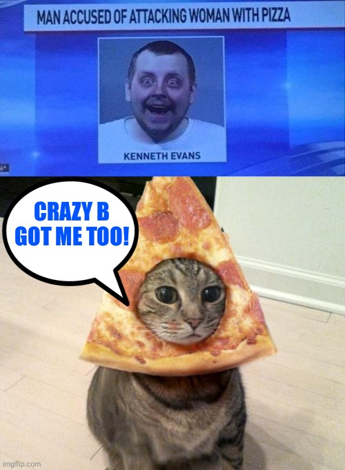 Pizza cat: origins | CRAZY B GOT ME TOO! | image tagged in pizza cat,crazy,memes,funny | made w/ Imgflip meme maker