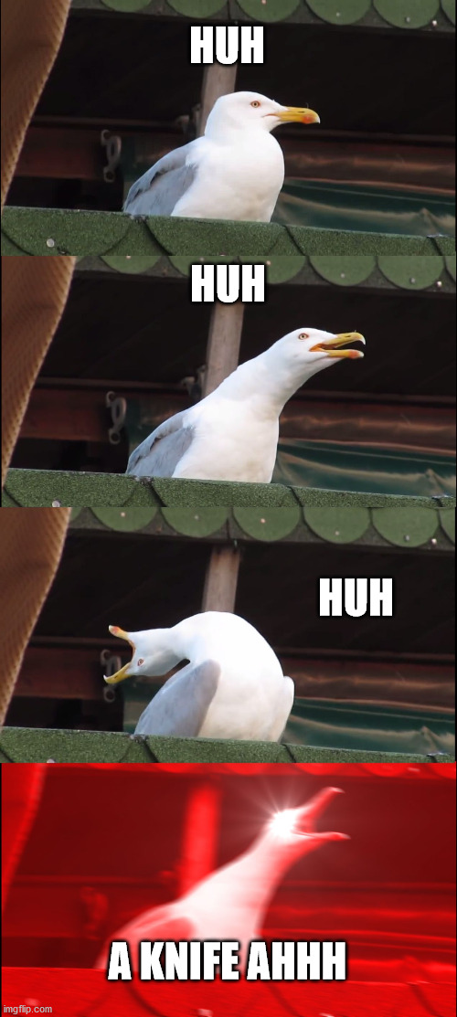 Inhaling Seagull Meme | HUH HUH HUH A KNIFE AHHH | image tagged in memes,inhaling seagull | made w/ Imgflip meme maker