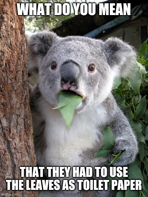 Surprised Koala Meme |  WHAT DO YOU MEAN; THAT THEY HAD TO USE THE LEAVES AS TOILET PAPER | image tagged in memes,surprised koala | made w/ Imgflip meme maker
