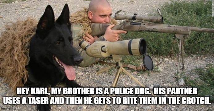 Sniper and dog |  HEY KARL, MY BROTHER IS A POLICE DOG.  HIS PARTNER USES A TASER AND THEN HE GETS TO BITE THEM IN THE CROTCH. | image tagged in sniper,dog,police dog | made w/ Imgflip meme maker