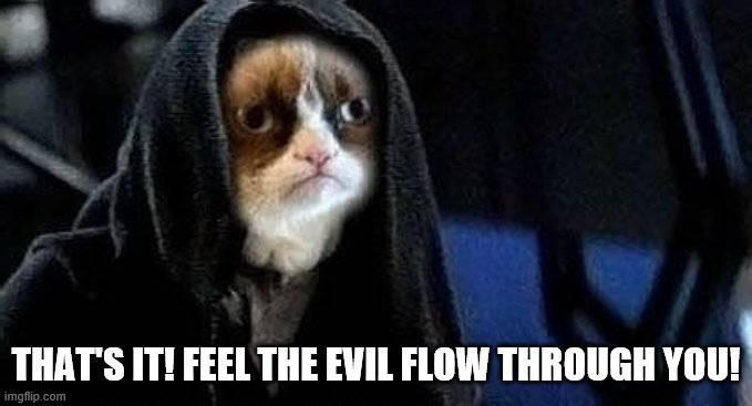 Emperor Grumpy Cat Palpatine | THAT'S IT! FEEL THE EVIL FLOW THROUGH YOU! | image tagged in emperor grumpy cat palpatine | made w/ Imgflip meme maker