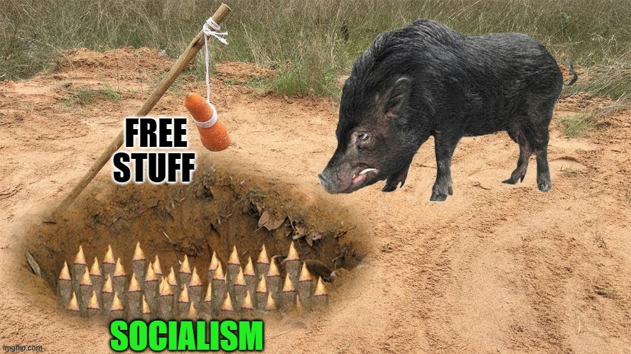 It's a trap... |  STUFF | image tagged in free,socialism | made w/ Imgflip meme maker
