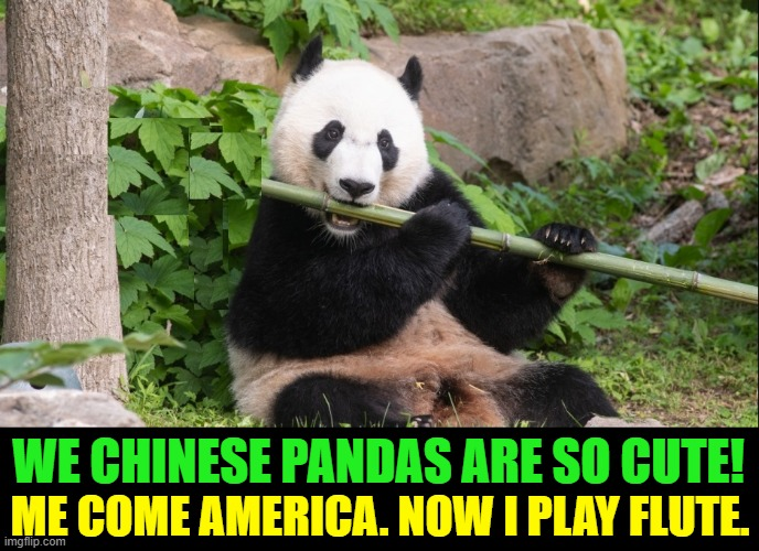 """Good things Come from China."" —Ming Ming (My First Poem) 