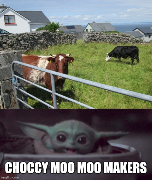CHOCCY MOO MOO MAKERS | image tagged in happy baby yoda | made w/ Imgflip meme maker