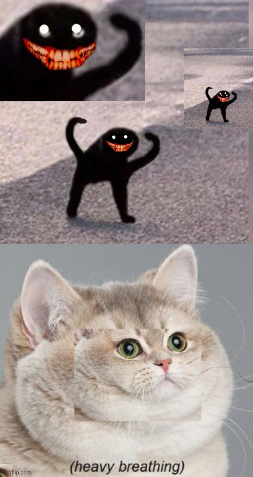 image tagged in memes,heavy breathing cat,cursed cat | made w/ Imgflip meme maker