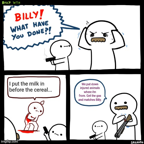 Billy, What Have You Done |  I put the milk in before the cereal... We put down injured animals where i'm from. Get the gas and matches Billy. | image tagged in billy what have you done | made w/ Imgflip meme maker