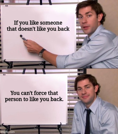 Jim Halpert Says facts |  If you like someone that doesn't like you back; You can't force that person to like you back. | image tagged in jim halpert explains,the office,jim halpert | made w/ Imgflip meme maker