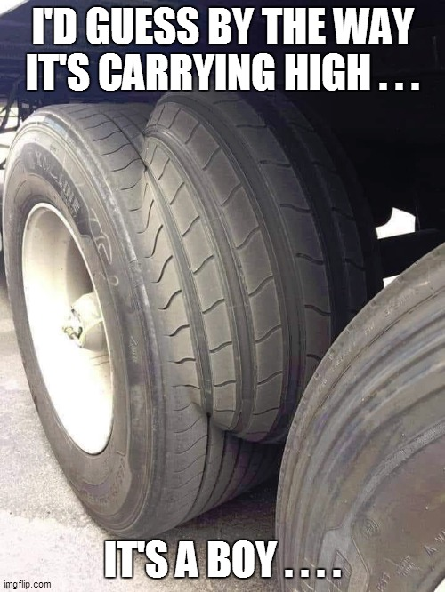 I'D GUESS BY THE WAY IT'S CARRYING HIGH . . . IT'S A BOY . . . . | image tagged in trucker,trucks,funny memes,funny meme,funny,bad pun | made w/ Imgflip meme maker
