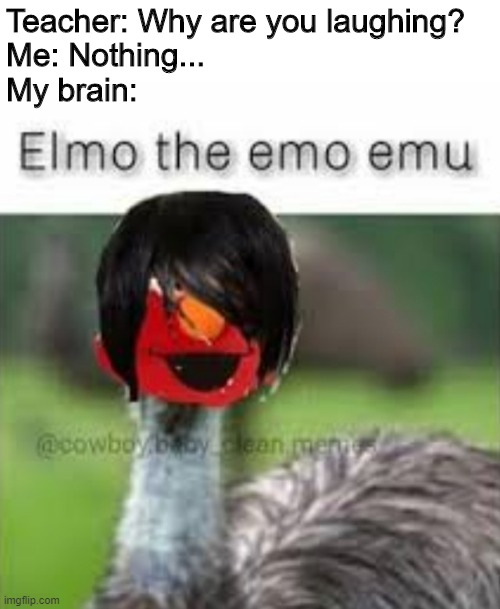 Big Brain Time | Teacher: Why are you laughing? Me: Nothing... My brain: | image tagged in elmo,emo,emu,scumbag brain,laughing,unhelpful high school teacher | made w/ Imgflip meme maker