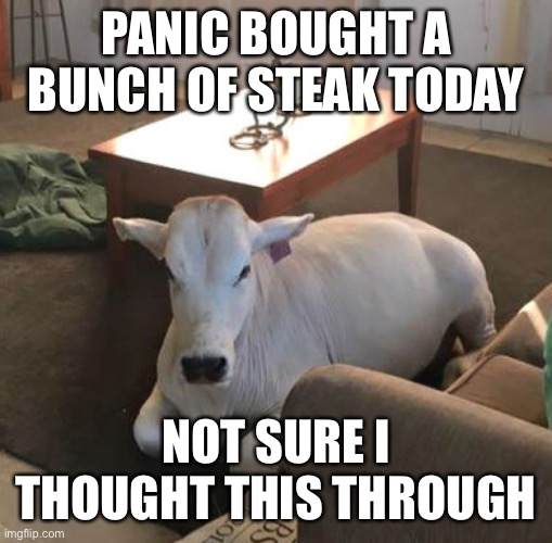 Panic buying steak |  PANIC BOUGHT A BUNCH OF STEAK TODAY; NOT SURE I THOUGHT THIS THROUGH | image tagged in coronavirus,steak dinner,steak,shopping,panic | made w/ Imgflip meme maker