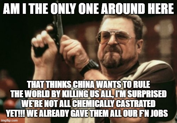 Am I The Only One Around Here |  AM I THE ONLY ONE AROUND HERE; THAT THINKS CHINA WANTS TO RULE THE WORLD BY KILLING US ALL, I'M SURPRISED WE'RE NOT ALL CHEMICALLY CASTRATED YET!!! WE ALREADY GAVE THEM ALL OUR F'N JOBS | image tagged in memes,am i the only one around here,made in china,china | made w/ Imgflip meme maker