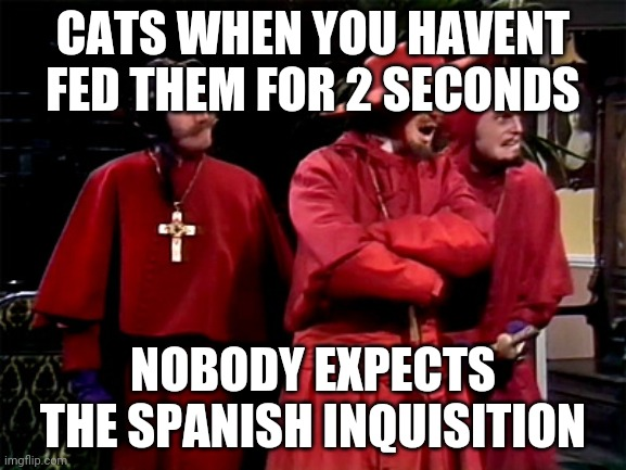 Spanish Inquisition | CATS WHEN YOU HAVENT FED THEM FOR 2 SECONDS NOBODY EXPECTS THE SPANISH INQUISITION | image tagged in spanish inquisition | made w/ Imgflip meme maker