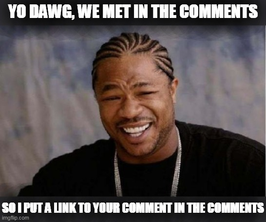 Yo Dawg Heard You Meme | YO DAWG, WE MET IN THE COMMENTS SO I PUT A LINK TO YOUR COMMENT IN THE COMMENTS | image tagged in memes,yo dawg heard you | made w/ Imgflip meme maker