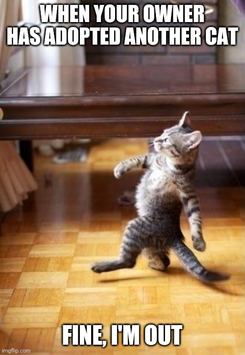 Cool Cat Stroll Meme |  WHEN YOUR OWNER HAS ADOPTED ANOTHER CAT; FINE, I'M OUT | image tagged in memes,cool cat stroll | made w/ Imgflip meme maker