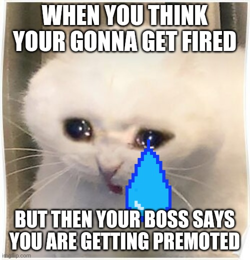 promotion |  WHEN YOU THINK YOUR GONNA GET FIRED; BUT THEN YOUR BOSS SAYS YOU ARE GETTING PREMOTED | image tagged in sadness | made w/ Imgflip meme maker