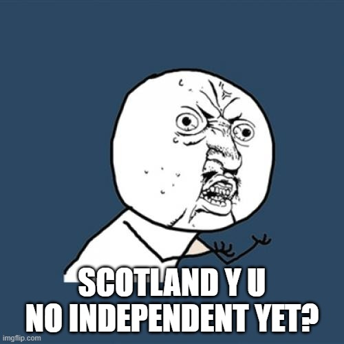 The UK leaves the EU and Scotland was against this...Hmmmmmm |  SCOTLAND Y U NO INDEPENDENT YET? | image tagged in memes,y u no,scotland,independence | made w/ Imgflip meme maker