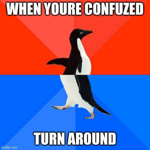 Socially Awesome Awkward Penguin |  WHEN YOURE CONFUZED; TURN AROUND | image tagged in memes,socially awesome awkward penguin | made w/ Imgflip meme maker