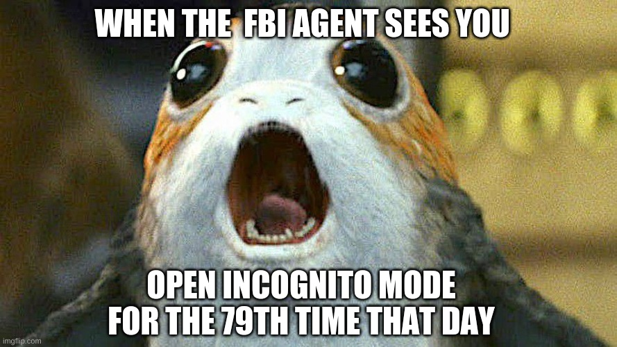 porg |  WHEN THE  FBI AGENT SEES YOU; OPEN INCOGNITO MODE FOR THE 79TH TIME THAT DAY | image tagged in porg | made w/ Imgflip meme maker