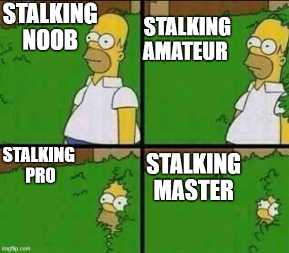 Homer Simpson Nope |  STALKING AMATEUR; STALKING NOOB; STALKING  PRO; STALKING MASTER | image tagged in homer simpson nope | made w/ Imgflip meme maker
