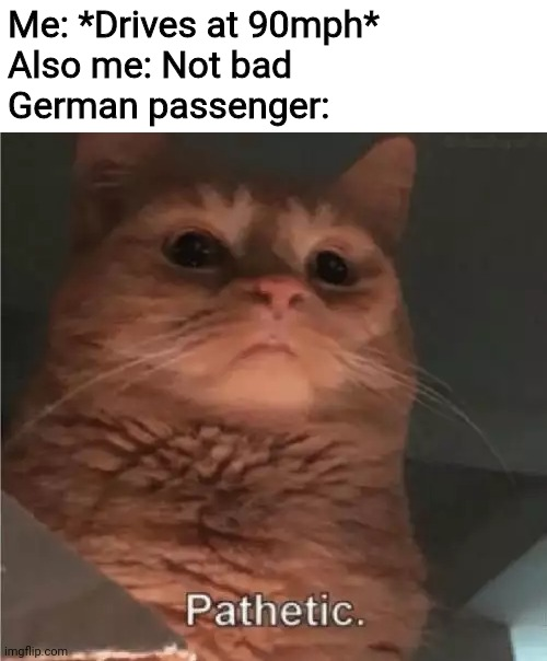 Autobahn |  Me: *Drives at 90mph* Also me: Not bad German passenger: | image tagged in pathetic cat,car,speed,memes,funny | made w/ Imgflip meme maker
