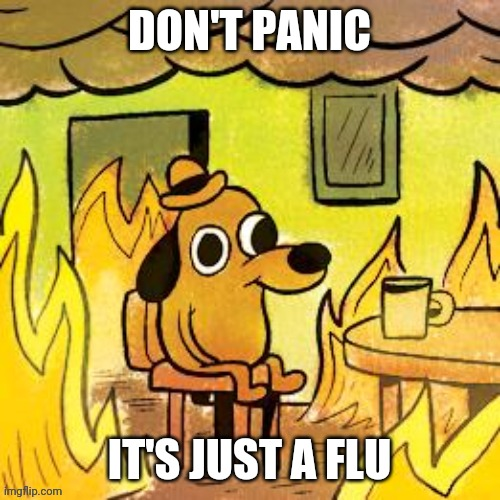 Dog in burning house | DON'T PANIC IT'S JUST A FLU | image tagged in dog in burning house | made w/ Imgflip meme maker