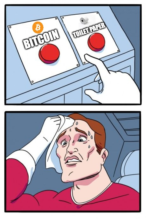 Choose Wisely | BITCOIN TOILET PAPER | image tagged in the daily struggle,bitcoin,btc,toliet paper,coronavirus,hording | made w/ Imgflip meme maker