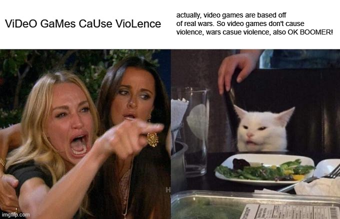 i hate when people say this | ViDeO GaMes CaUse VioLence actually, video games are based off of real wars. So video games don't cause violence, wars casue violence, also  | image tagged in memes,woman yelling at cat | made w/ Imgflip meme maker