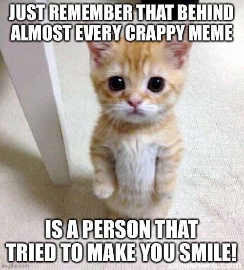 Cute Cat |  JUST REMEMBER THAT BEHIND ALMOST EVERY CRAPPY MEME; IS A PERSON THAT TRIED TO MAKE YOU SMILE! | image tagged in memes,cute cat | made w/ Imgflip meme maker